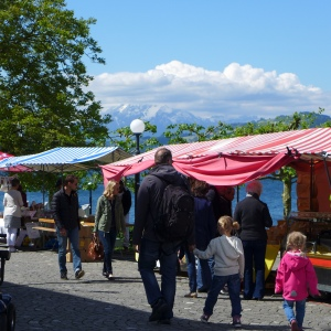 Family at Zug saturday market. They decided to leave me alone my boring wanderings after that