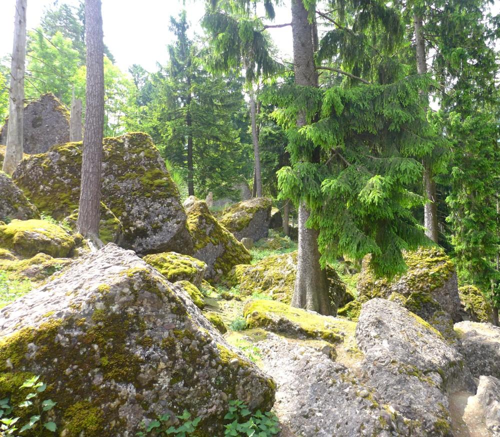 Landslide landscape in Goldnau
