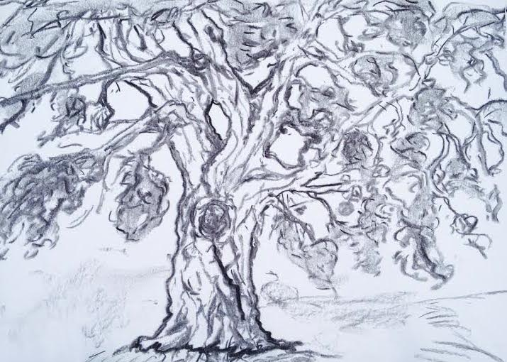 "Tree that looks like all HD's trees and nothing like actual. Good thing I went all the way out there to ""sketch it from life"""