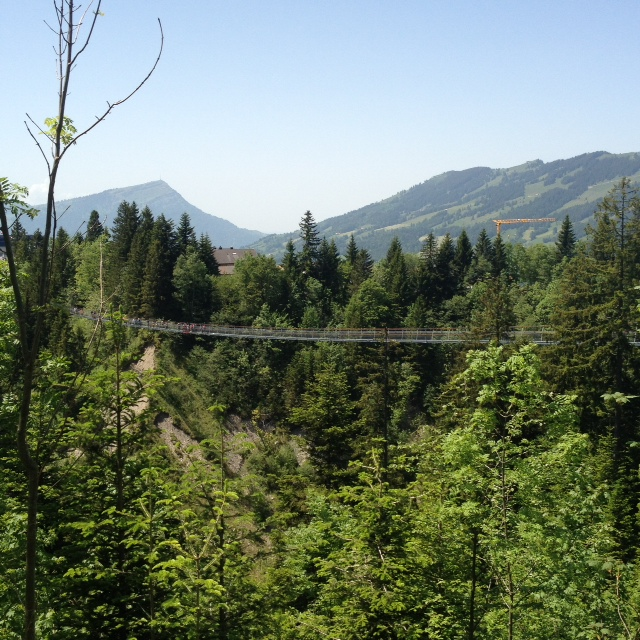 This bridge near gave me a heart attack. Sad that somebody who loves the mountains so much is so afraid of heights