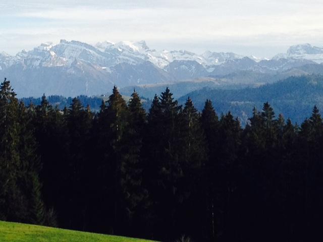 view from brunch at Gottschalkenberg