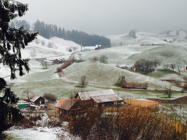 Icy pre-alpine moors